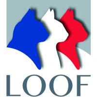 Loof logo